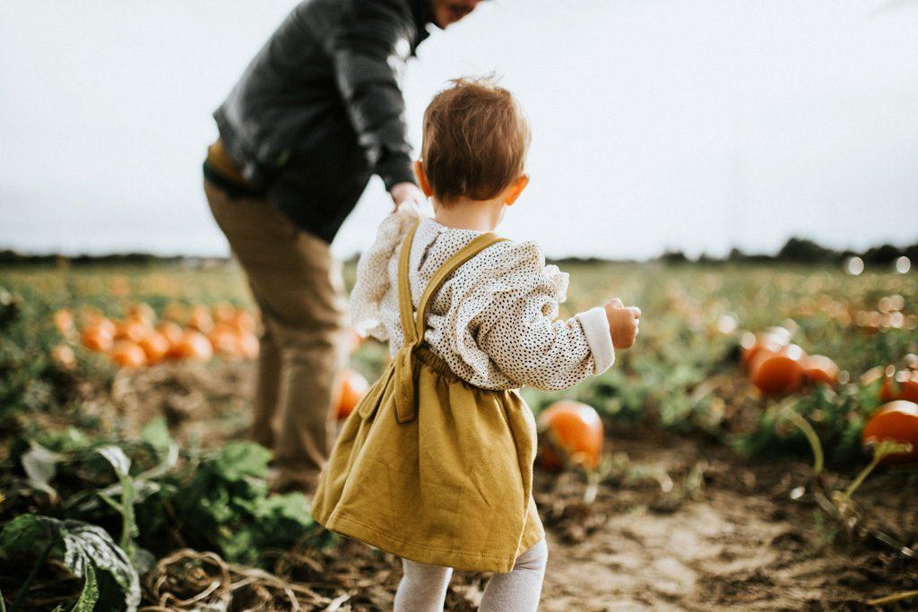 Vater und Kind Hand in Hand auf dem Feld.